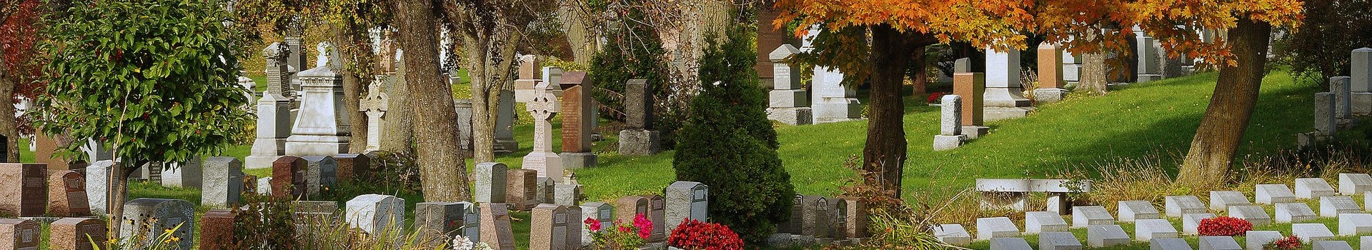 headstones in cemetery